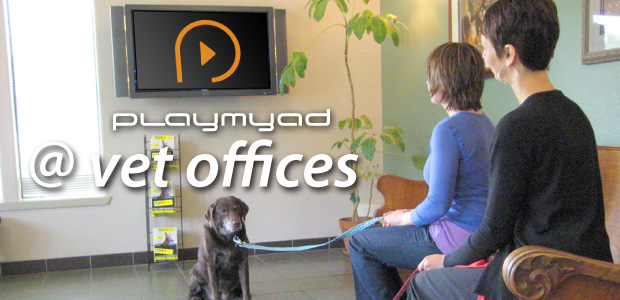Video Marketing at Vet Office